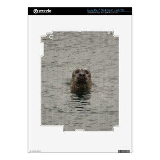 Sello de puerto triste en el arte de la fauna de iPad 3 skins