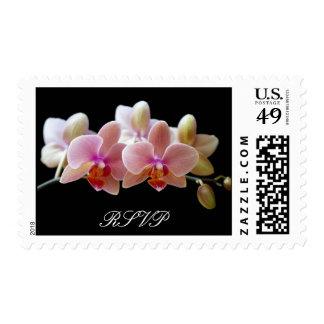 Sello de RSVP de las orquídeas