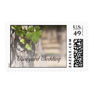 Sello del boda del viñedo de las hojas de las uvas