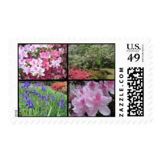 Sello del collage de la flor de la primavera