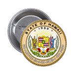 Sello del estado de Hawaii Pins