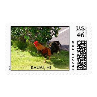 Sello del gallo de Kauai