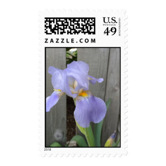 Sello del iris