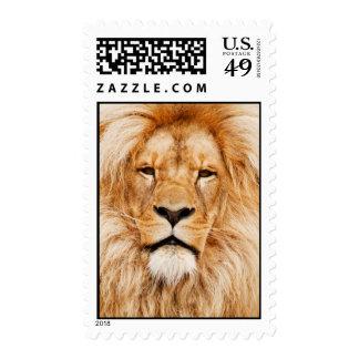 Sello del león
