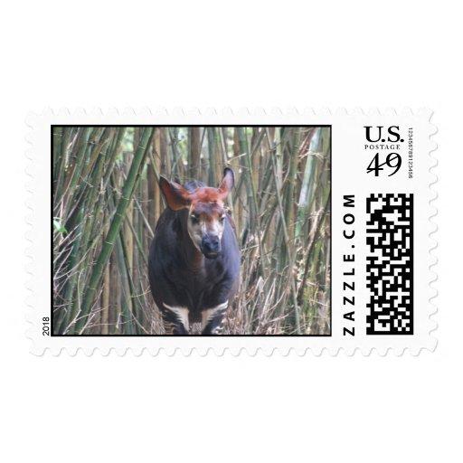 Sello del Okapi