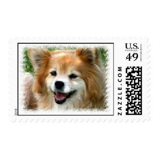 Sello del perro de Pomeranian