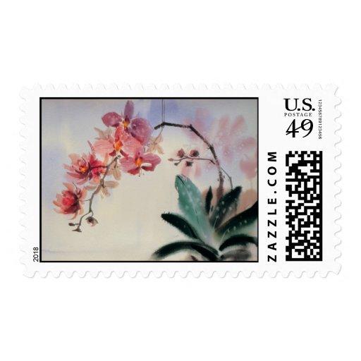 Sello del Phalaenopsis