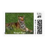 Sello del tigre de Bengala, tigre de Bengala