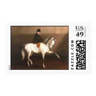 Sello del vintage del caballo