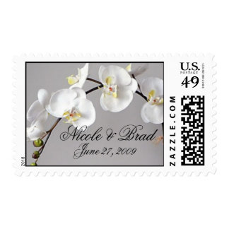 Sello elegante de la orquídea del Phalaenopsis