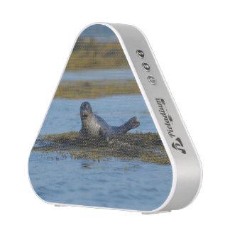 Sello en la bahía Maine de Casco Altavoz Bluetooth