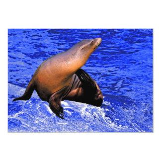 """Sello en roca con el mar azul profundo invitación 5"""" x 7"""""""