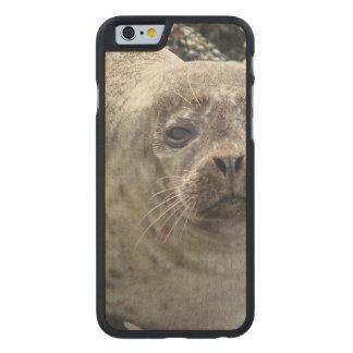 Sello Funda De iPhone 6 Carved® De Arce