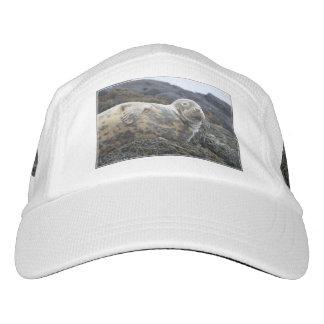 Sello gris gorras de alto rendimiento