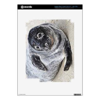 Sello gris iPad 3 skins