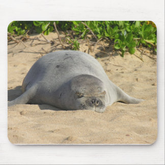 Sello hawaiano soñoliento del monje mousepads