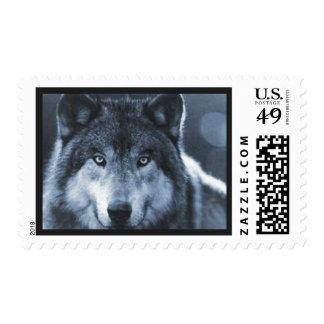 Sello impresionante del lobo