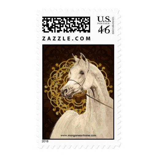 Sello medio del caballo árabe gris