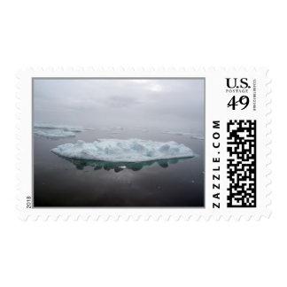 Sello místico de los icebergs