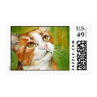 Sello nacional anaranjado del gato del pelo corto