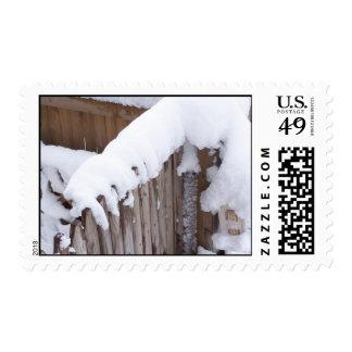 Sello nevado de la cerca