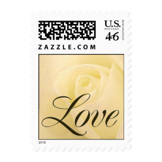 Sello nupcial del amor del rosa blanco
