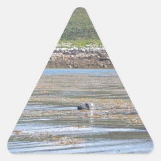 Sello Pegatina Triangular