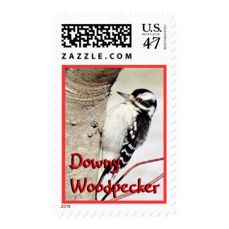 Sello-personalizar suave del franqueo del x de la timbres postales