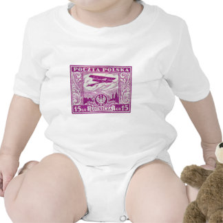 sello polaco del correo aéreo 1925 15gr trajes de bebé