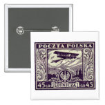 sello polaco del correo aéreo 1925 45gr pin