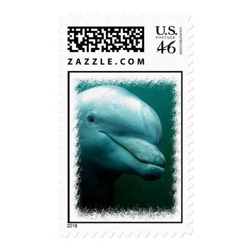 Sello postal del delfín