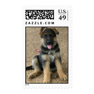 Sello postal del perrito del pastor alemán