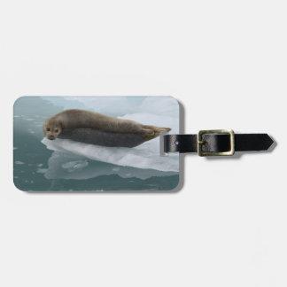 sello que descansa sobre el hielo etiqueta de equipaje