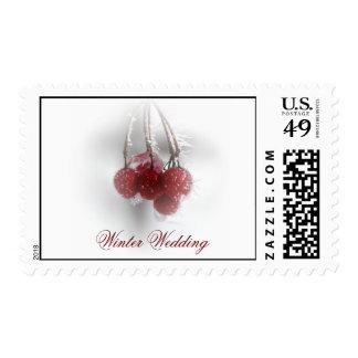 Sello rojo escarchado del boda del invierno de las