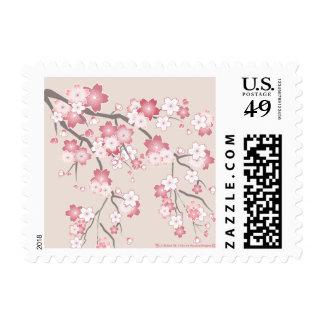 Sello rosado de la flor de cerezo de Sakura