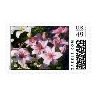 Sello rosado de Lillies