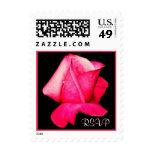 Sello rosado del rosa de RSVP