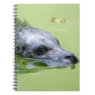 Sello Spiral Notebook