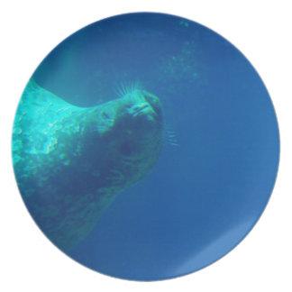 Sello subacuático platos