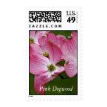 Sello vertical:  Dogwood rosado