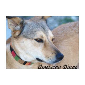 Sellos americanos del Dingo Impresión En Lienzo Estirada