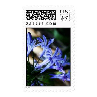 Sellos azules del personalizado del Wildflower
