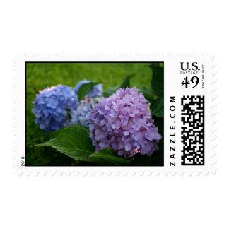 Sellos azules púrpuras de la flor del boda del