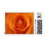 Sellos color de rosa anaranjados de los E.E.U.U.
