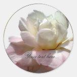 Sellos color de rosa blancos y rosados de las invi
