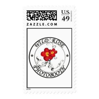 Sellos color de rosa salvajes del logotipo