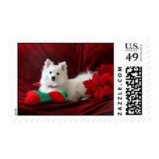 Sellos con un perro esquimal americano hermoso Luc