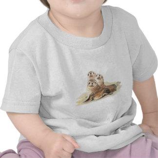 Sellos curiosos lindos, animales de la acuarela camisetas