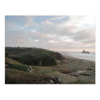 Sellos de elefante en la playa de Piedras Blancos Postales