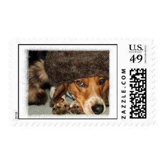 """Sellos de la caza del perro del beagle de """"Davy Cr"""